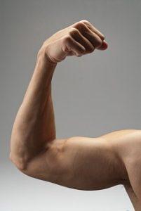 męski biceps